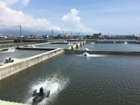 屏東漁場全景