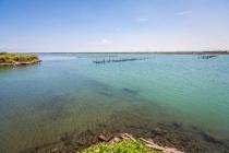 養殖水源來自七股潟湖海水。潟湖是陸上魚塭跟海域的緩衝水域,波浪與海流較外海穩定